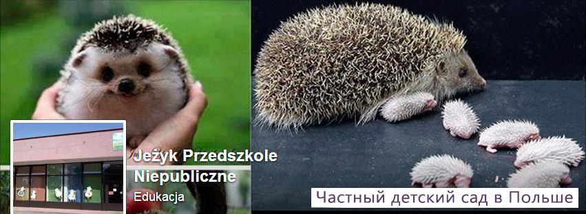Частный садик в Польше