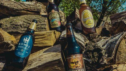Польское пиво, которое стоит покупать